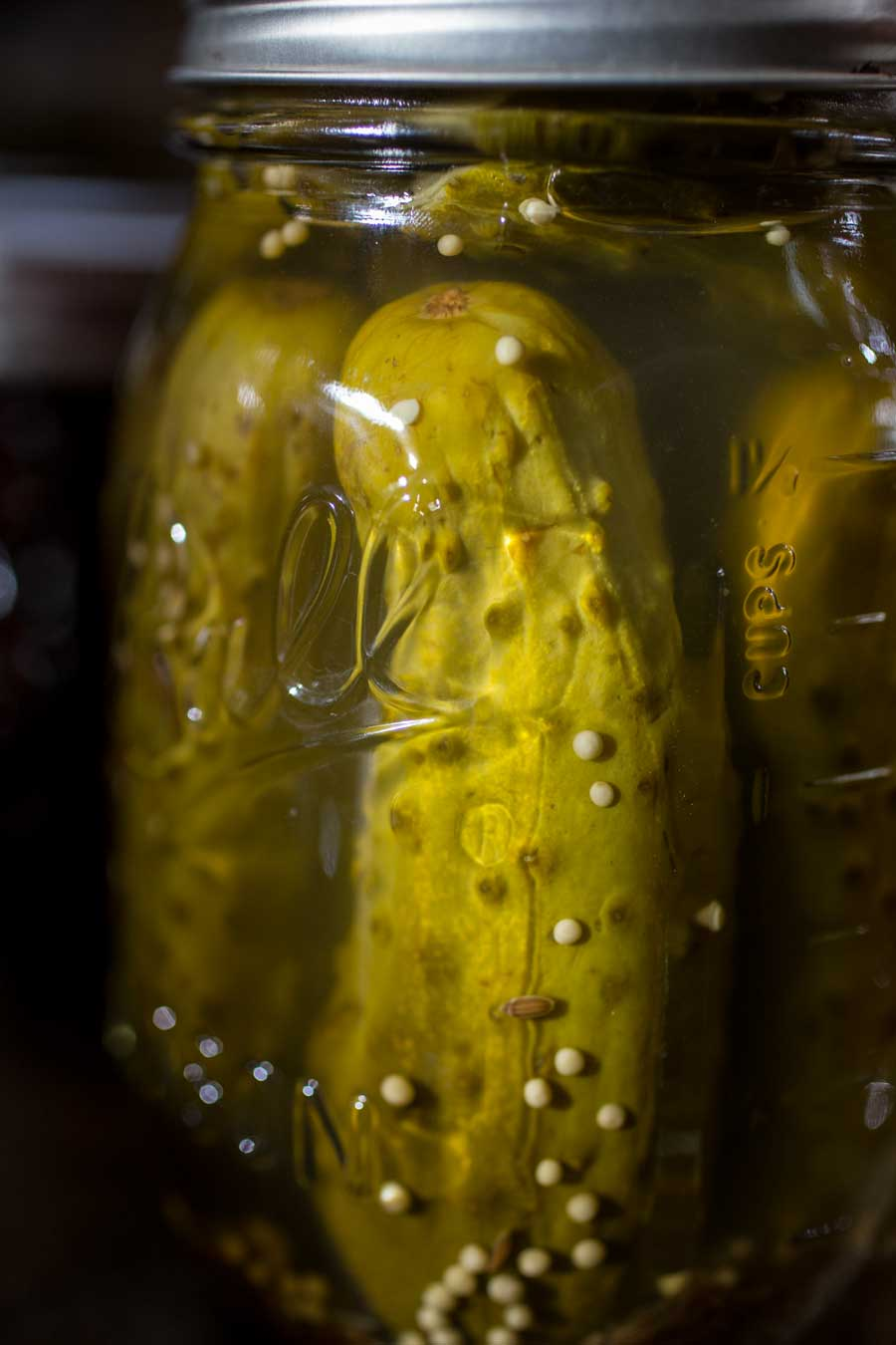 Food Photography - Pickled cucumbers shot for Joys of Jewish Preserving Cookbook Shoot